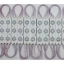 LED moodulid IP65 L-2015 Lahe/valge